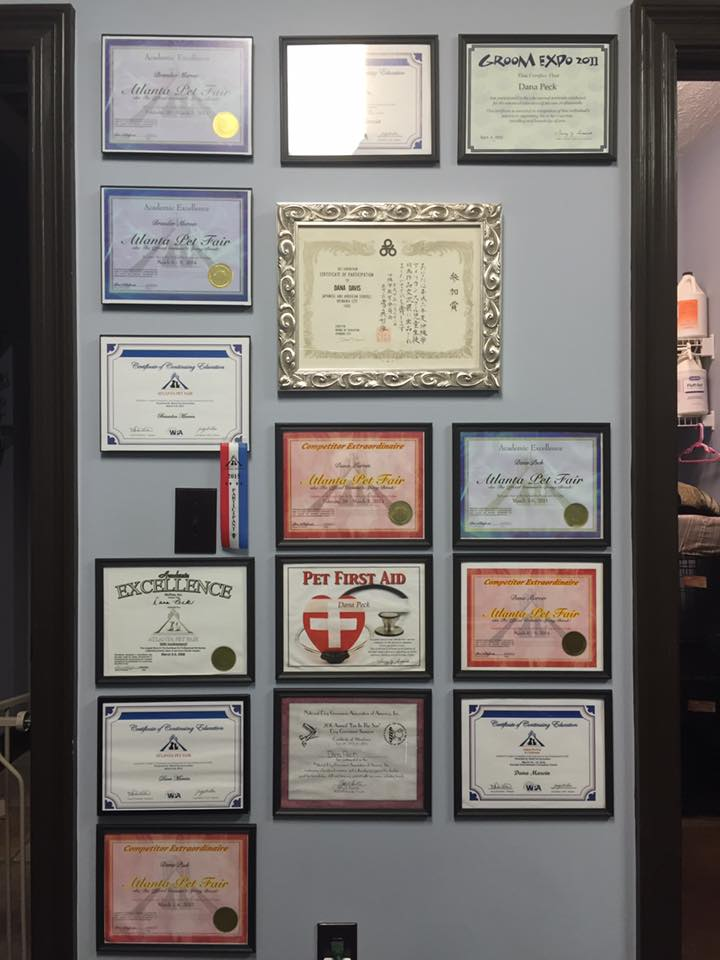 Our wall of awards and certificates for grooming